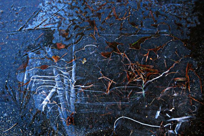 frozenpuddle-1-soft-web