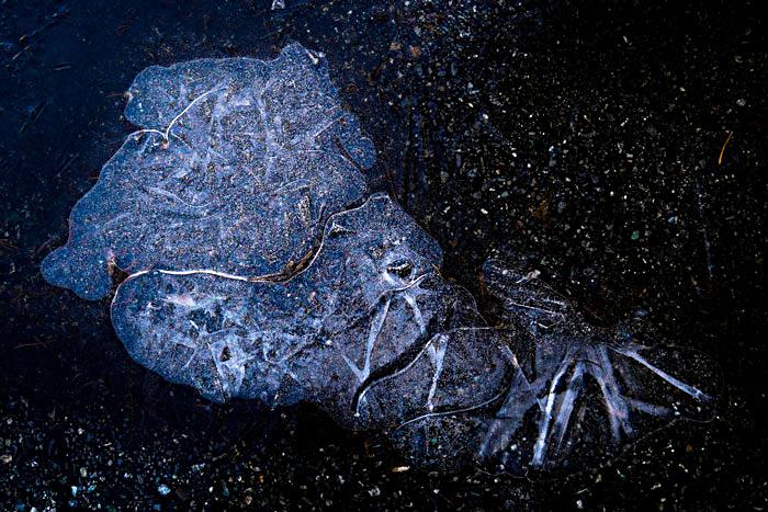 frozenpuddle-2-galaxy-web