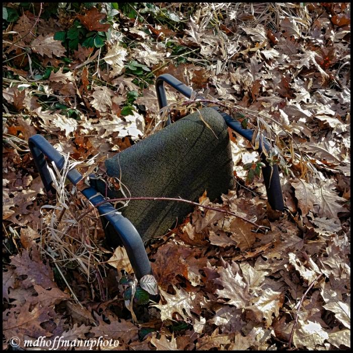 Chair In Leaves-1