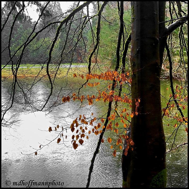 Godwin Pond