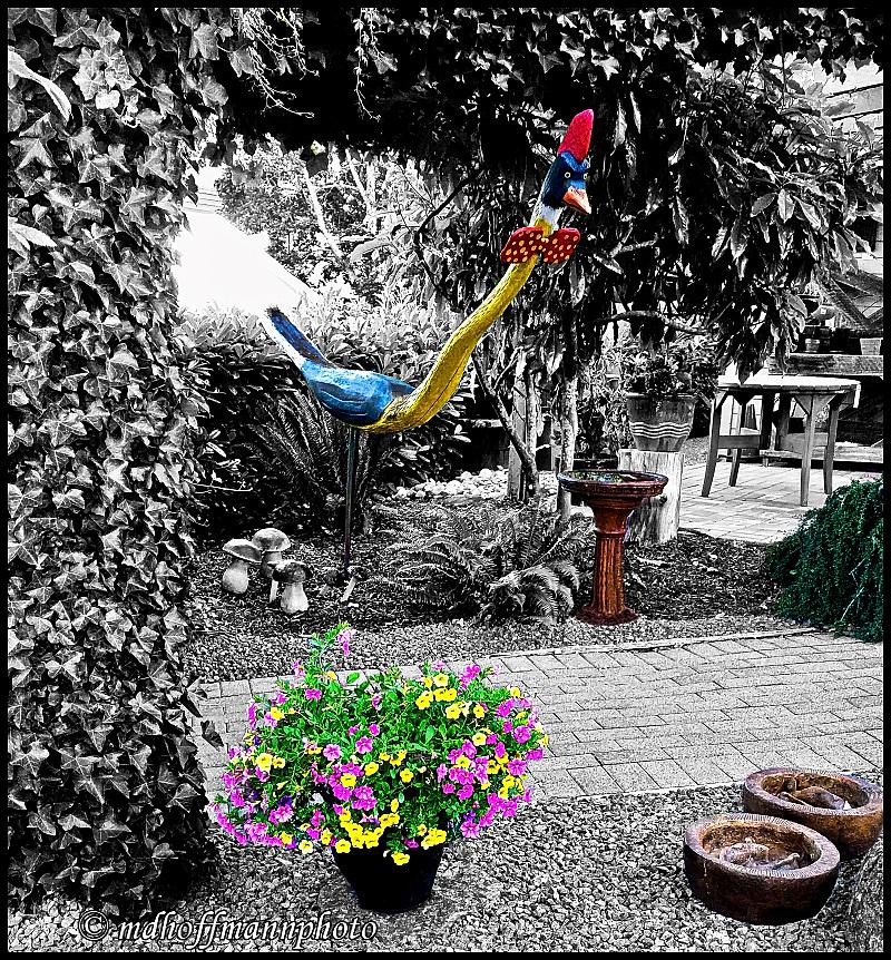 20170714_203208-ColorPop-web