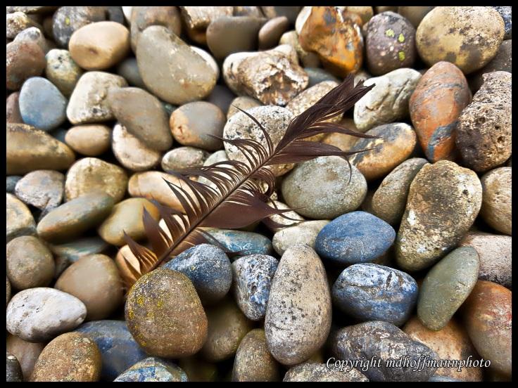 Feather Stones-1-wm