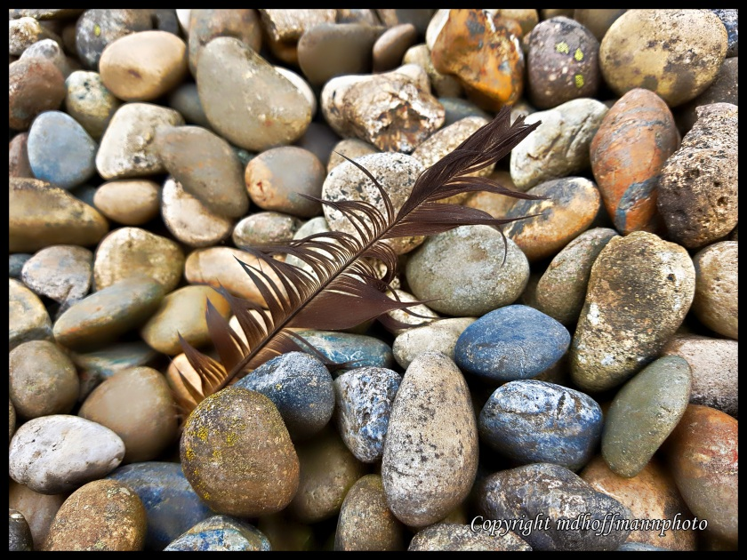 Feather Stones-1-wm